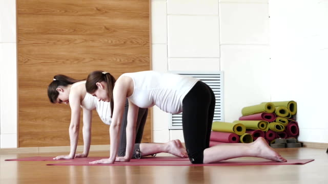 two pregnant women doing relaxation exercise on exercising mat video