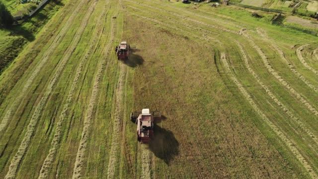 två röda skördare med vita hytttak skördar spannmålsgrödor på gården i torrt soligt väder. strimlad halm kastas ut bakom traktorerna - roof farm bildbanksvideor och videomaterial från bakom kulisserna