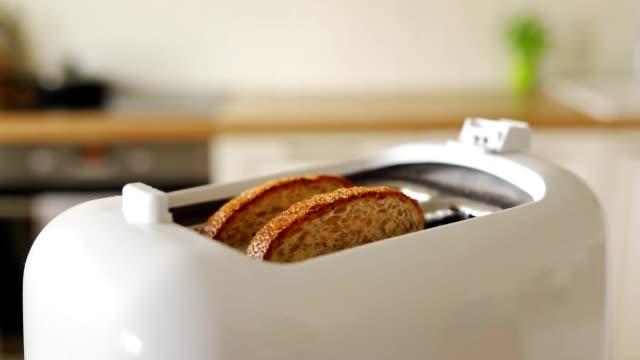 due pane tostato arrosto che spuntano di tostapane. - elettrodomestico attrezzatura domestica video stock e b–roll