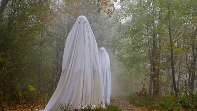 Two scary ghosts in the woods Two scary ghosts in the woods. The front one walking towards the camera ghost stock videos & royalty-free footage