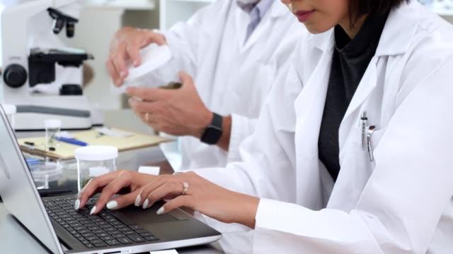 due scienziati lavorano alla ricerca sui campioni di suolo - botanica video stock e b–roll