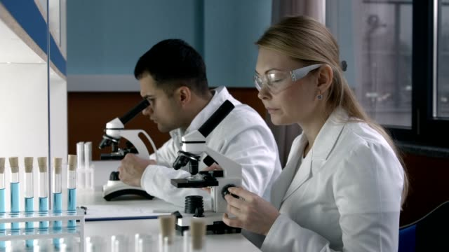 Two scientists working at research laboratoy video