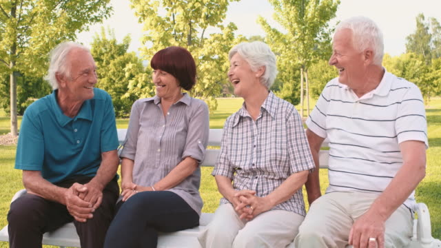 Two senior couples chatting and laughing in the park video