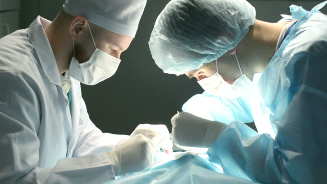 two shot of veterinarian surgeons in operating room video
