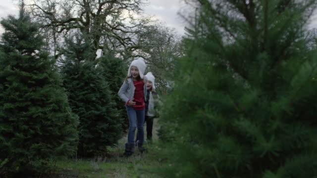 Dos hermanas cogidos de la mano mientras se ejecuta a través de una Navidad Tree Farm - vídeo