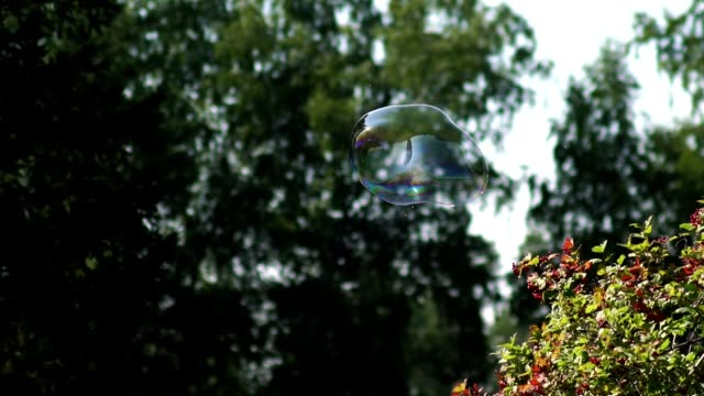 Two small soap bubbles flying and shining. Metamorphosis of Bubbles video