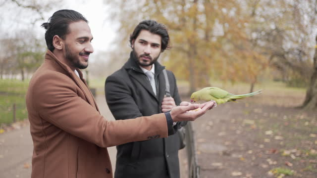 two smartly dressed men feeding parrots in the park