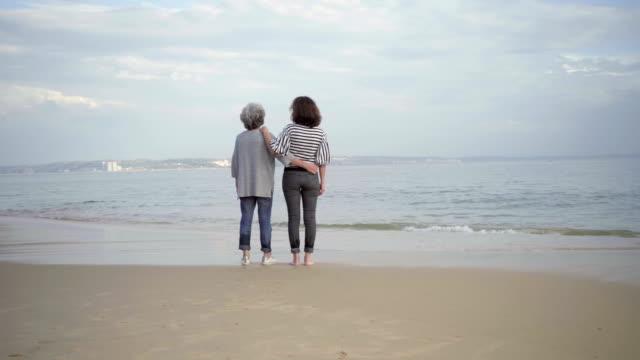 二人の笑みを浮かべて女性砂浜で抱き締めると距離を指します。 ビデオ