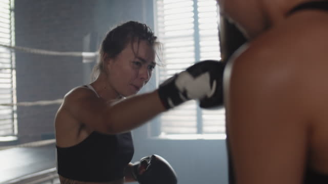 two sportswomen doing exercises with boxing bag - sparring allenamento video stock e b–roll