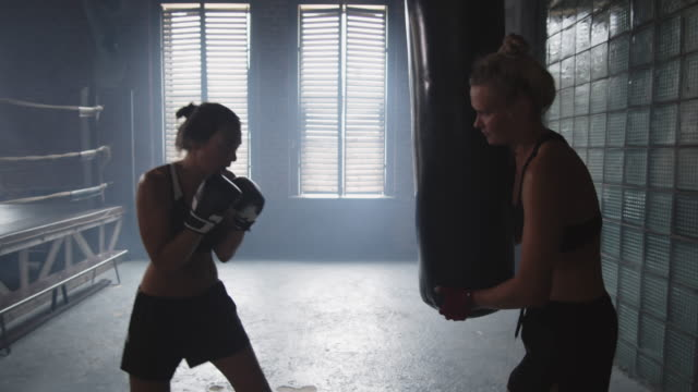 two sportswomen exercising in boxing hall - sparring allenamento video stock e b–roll