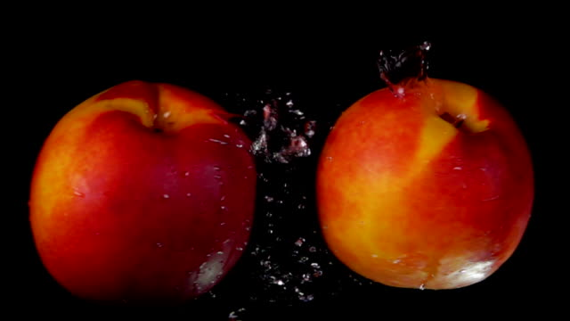 Two sweet ripe peaches collide on black background - video