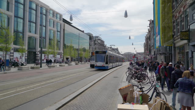two trams transport moving on the streets in amsterdam - tranvia video stock e b–roll
