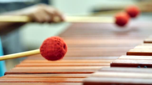 Two unrecognizable elementary age girls play Marimba together