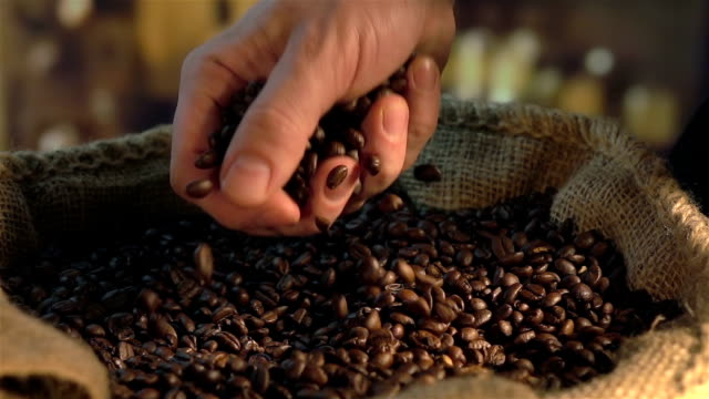due video di mangiare chicchi di caffè in real al rallentatore - coffee farmer video stock e b–roll