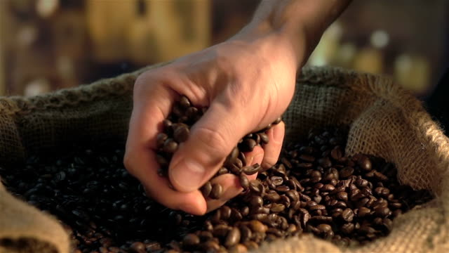 Two videos of grabbing coffee beans in real slow motion Two high quality videos of taking coffee beans in real 1080p slow motion 250fps coffee stock videos & royalty-free footage
