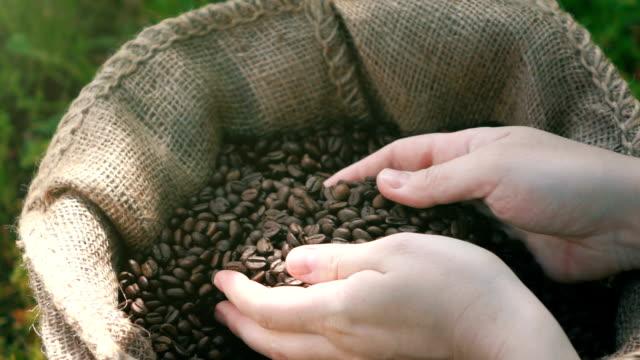 Deux vidéos de café en grains de Real au ralenti - Vidéo