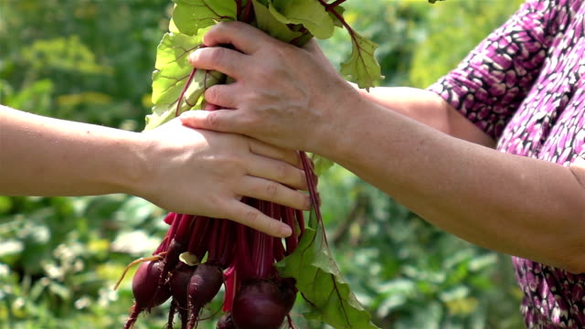 Two videos of woman holding beetroots in real slow motion