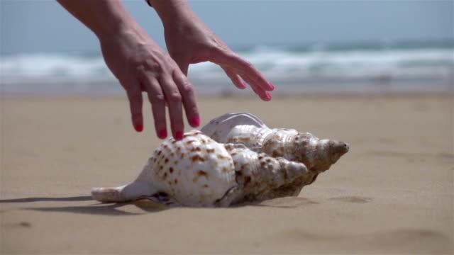 vídeos de stock e filmes b-roll de two videos of woman picking up shells-real slow motion - bugio