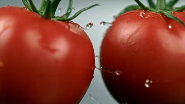 slo mo two wet tomatoes crash at each other - pomodoro video stock e b–roll