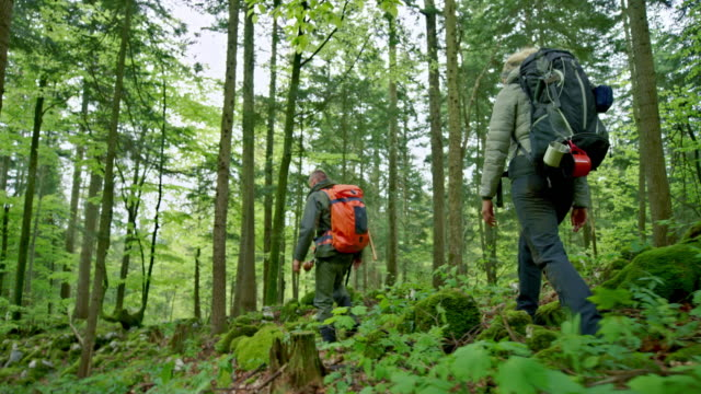 Two wilderness survival experts specialist walking through a forest