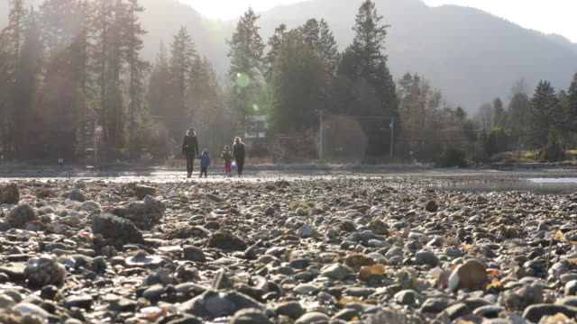Two women cross tidal flat with young children