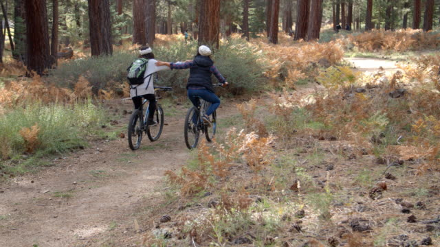 Two women embracing as they ride bikes in forest, back view video