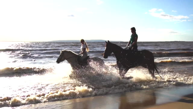 Two women ride on horse at river beach in water sunset light Two women ride on horse at river beach in water sunset light HD horseback riding stock videos & royalty-free footage