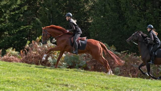 丘の上に疾走する馬に乗っている slo mo 2 人の女性 - 動物に乗る点の映像素材/bロール