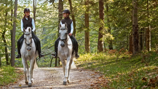 TD Two women riding white horses in forest
