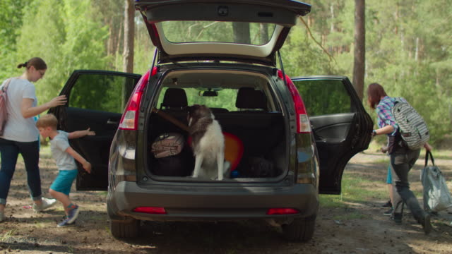 Two women, two boys having and Siberian Husky dog on summer camping vacation. Happy family of two mothers and two sons taking bags from car trunk and walking in forest. Slow motion, steadicam shot.