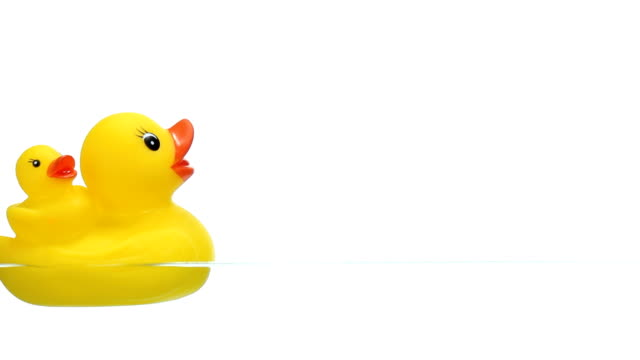 Two Yellow Rubber Duck Floating on Water video