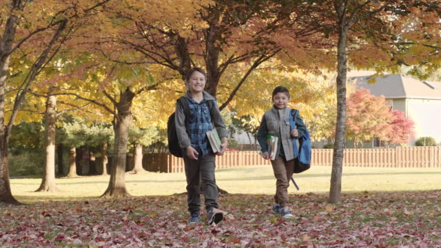 Two Young Brothers Walking through Fallen Leaves in the Park video