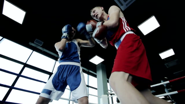 Two young professional boxers are fighting on the boxing ring video