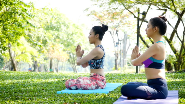Two young women doing the yoga in morning park video