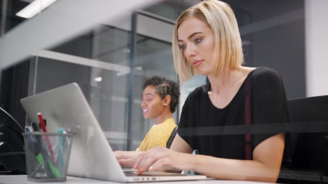 two young women working together on computers in a glass office cubicle, one turning around to the other, low angle, close up, seen through glass - office cubicle stock videos & royalty-free footage