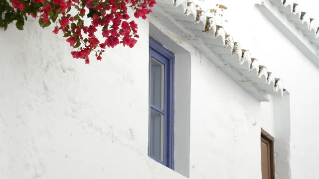 Typical andalusian window of a whitewashed house with red flowers in the wall Typical andalusian window of a whitewashed house with red flowers in the wall wrought iron stock videos & royalty-free footage