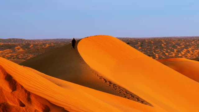 Typical landscape of the Sahara Desert early in the morning video