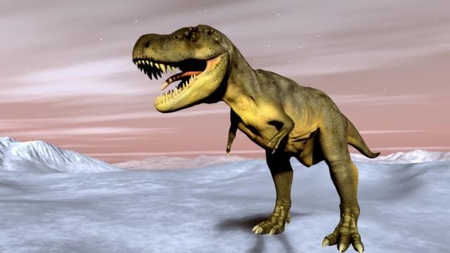 tyrannosaurus rex animation - tyrannosaurus rex bildbanksvideor och videomaterial från bakom kulisserna