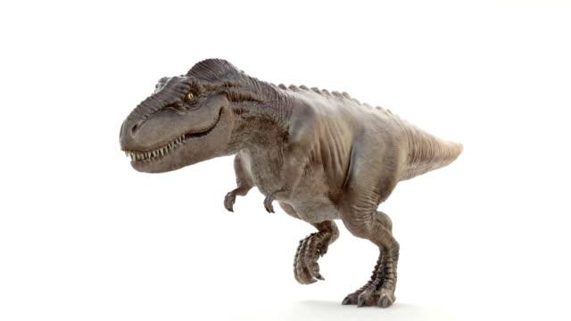 tyrannosaurus rex i rörelse av körning - tyrannosaurus rex bildbanksvideor och videomaterial från bakom kulisserna