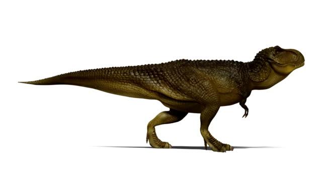 Tyrannosaurus Rex - Vidéo