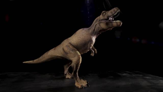 tyrannosaurus / t-rex modell figur rörelsekontroll reglaget flytta i 4k mot svart bakgrund - tyrannosaurus rex bildbanksvideor och videomaterial från bakom kulisserna