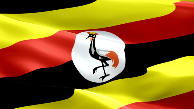 uganda flag motion loop video waving in wind. realistic ugandan flag background. uganda flag looping closeup 1080p full hd 1920x1080 footage. uganda africa country flags footage video for film,news - kiss filmów i materiałów b-roll
