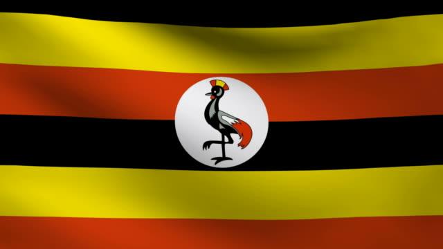 Uganda flag. video