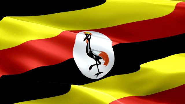 uganda waving flag. national 3d ugandan flag waving. sign of uganda seamless loop animation. ugandan flag hd resolution background. uganda flag closeup 1080p full hd video for presentation - kiss filmów i materiałów b-roll