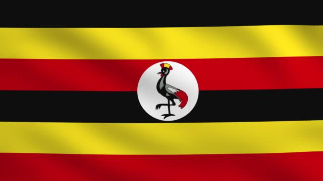 Ugandan flag video