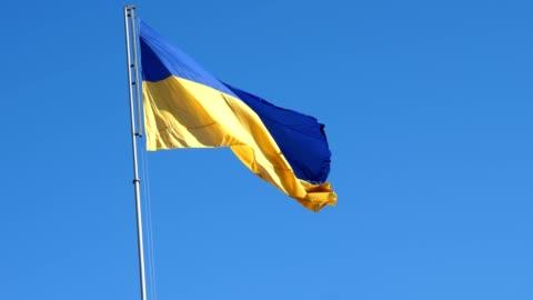 vídeos y material grabado en eventos de stock de ucraniana bandera ondeando en el viento y el azul cielo. - ucrania