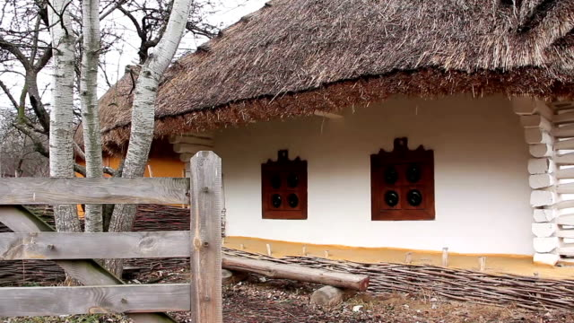 Ukrainian hut with thatched roof video