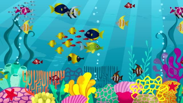 Undersea video