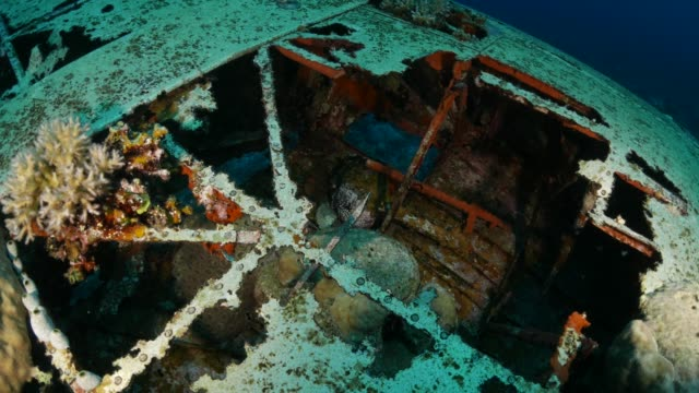 undersea wreck, japanese seaplane, palau - wrak statku filmów i materiałów b-roll