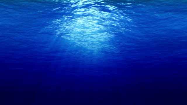 underwater 4k loop - на морском дне стоковые видео и кадры b-roll
